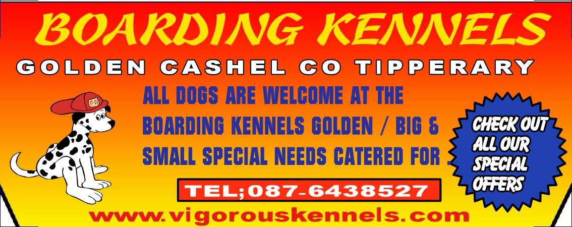 Dog Boarding Dublin North
