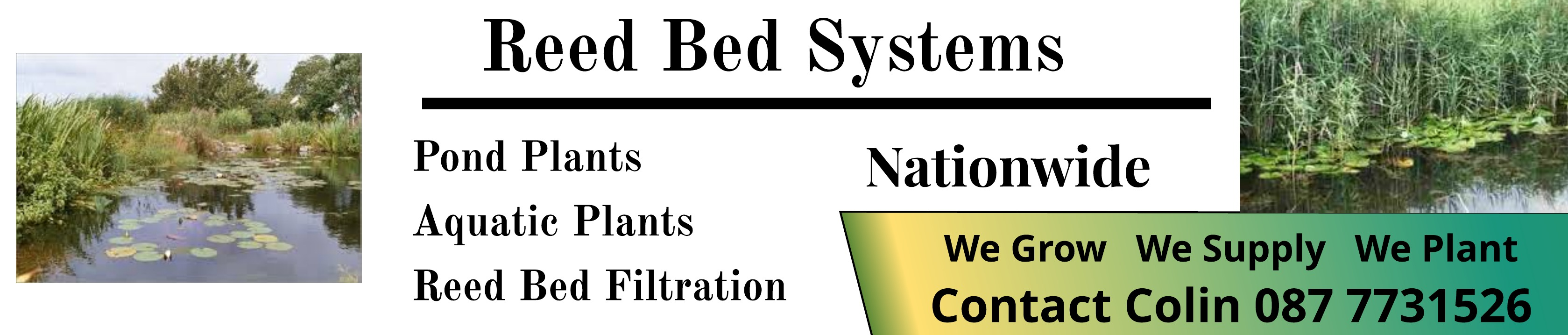 Reed Bed Systems Derry Reed Bed Systems In Derry Co